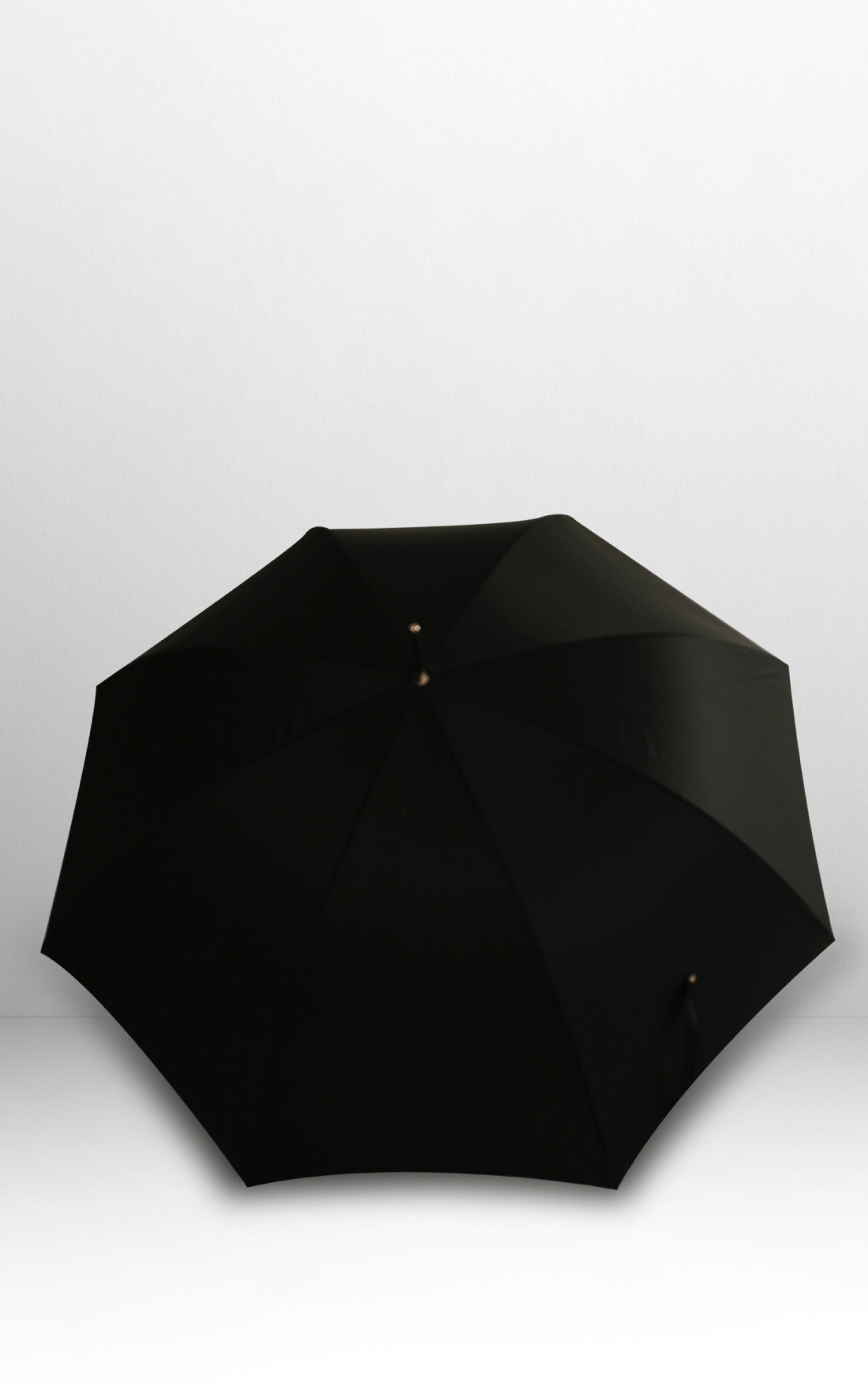 Pasotti - Silver Lion Umbrella (478-RASO-OXFORD/18-W37NERO)